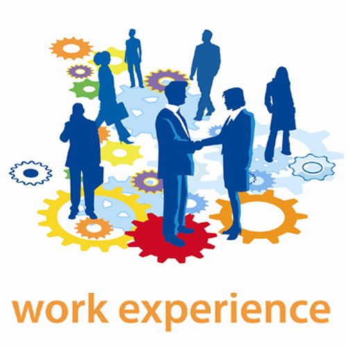 work experience - lessons