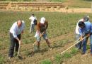 Regione Basilicata boccia odg sull'avvio della Banca regionale della terra lucana