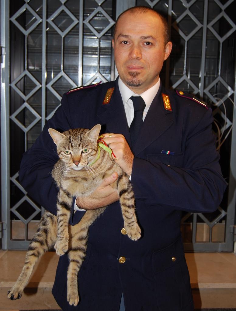 il gatto recuperato_questura mt 3 febbraio