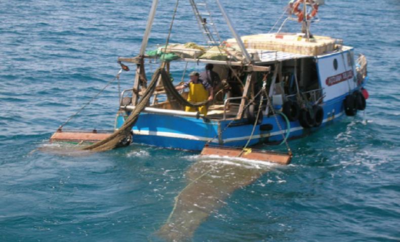 Valorizzazione pesca, innovazione, cibo e agricoltura a Heroes, Maratea