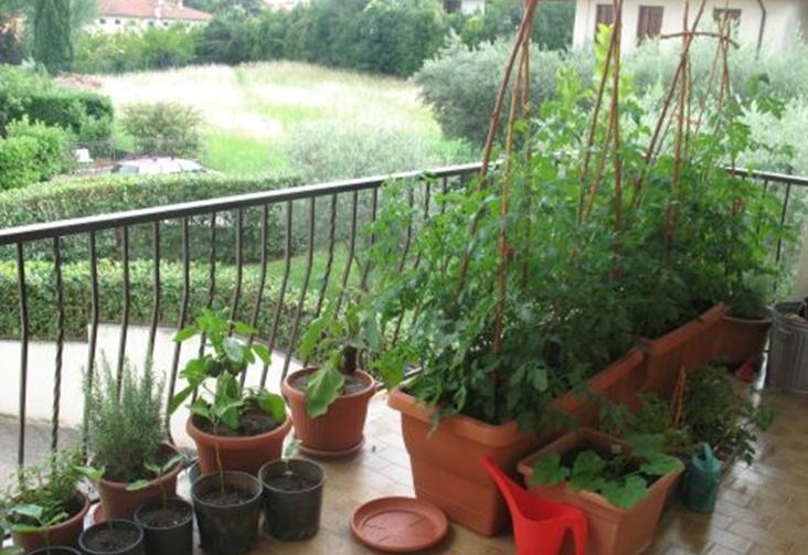 A Bernalda si parla del verde che fa cultura