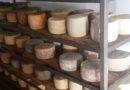 Regione Basilicata approva delibera per sostenere il settore lattiero-caseario