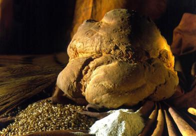 Pane e prodotti da forno, eccellenze enogastronomiche di Matera