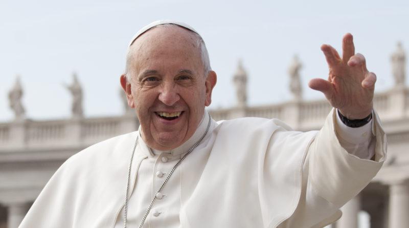 Un albero di ulivo a Molfetta per accogliere Papa Bergoglio