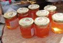 Alsia organizza corso all'analisi sensoriale del miele presso Metapontum Agrobios