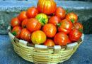 La Basilicata ai fornelli con il nuovo ricettario di Slow Food Editore