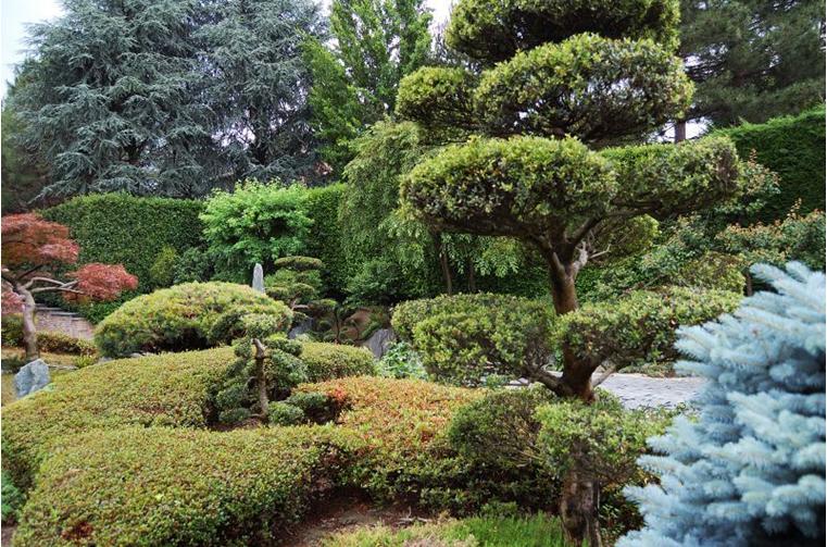 Seminario tecnico 39 il giardino giapponese 39 oltre free for Fontane da giardino fai da te