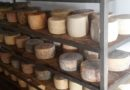 """Puglia, crisi del lattiero-caseario: """"Dalla Regione Puglia serve maggior sostegno alla filiera"""""""