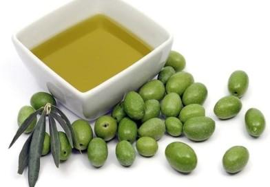 A Bari dal 20 al 22 gennaio il primo congresso internazionale di formazione dedicato all'olio extravergine d'oliva