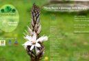 A Cassano Murge, la mostra Flora, fauna e paesaggi della Murgia